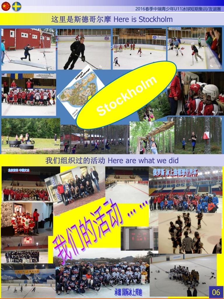 瑞典冰球 (5)